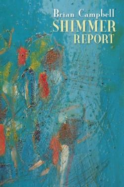 Shimmer Report